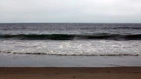 温和派在沙滩阴云密布天空北加利福尼亚挥动 股票视频