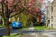 温哥华加拿大-在第16条大道的2017年4月24日,看法和石南花街道 图库摄影