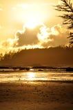温哥华岛的长滩 免版税库存图片