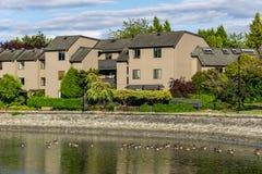 温哥华,加拿大- 2018年6月15日:在房子背景的浮动鸭子  库存图片
