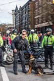 温哥华,加拿大- 2018年2月18日:温哥华在农历新年游行的警察局狗 免版税库存图片