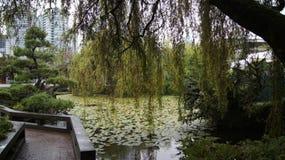 温哥华,加拿大- 2014年9月:博士 孙中山古典中国庭院 免版税库存照片