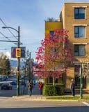 温哥华,加拿大- 2016年3月17日 在春天的城市街道 图库摄影