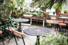温室冬景花园在赫尔辛基 库存图片