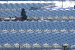 温室和冬天雪 库存照片