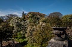 温室在植物园里在哥本哈根 库存图片