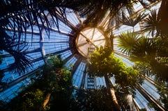 温室在植物园里在哥本哈根 免版税库存图片