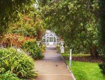 温室在老爱尔兰庭院里 库存图片