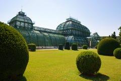 温室在维也纳 库存照片