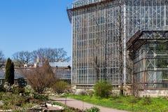 温室在sankt-peterburg植物园里 免版税库存照片