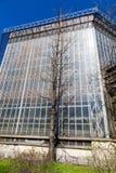 温室在sankt-peterburg植物园里 免版税图库摄影