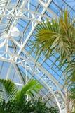 温室屋顶 库存图片