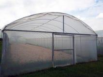 温室布料 透明室外被盖的布料 库存图片