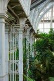温室温室的热带植物在Kew庭院Southwes里 免版税库存图片