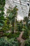 温室温室的热带植物在Kew庭院Southwes里 库存照片