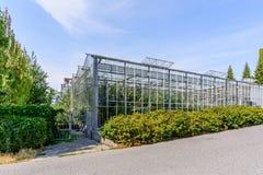 温室的玻璃液建筑反对背景o的 库存照片