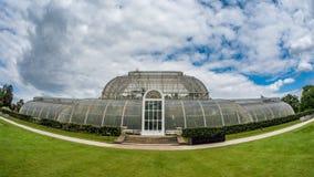 温室的白点在Kew从事园艺,伦敦 库存照片
