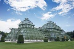 温室维也纳奥地利 免版税库存照片