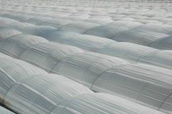 温室 免版税库存照片