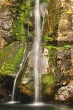 温文地落入平安的湖的水 免版税库存照片