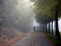 温暖和发光的秋天天 库存照片