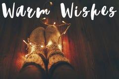 温暖愿望发短信,季节问候,时髦的被编织的羊毛袜子 免版税库存照片