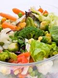 温暖沙拉的蔬菜 免版税图库摄影