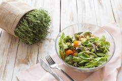 温暖沙拉的蔬菜 库存照片