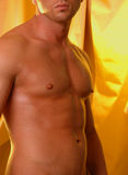 温暖男性的躯干 图库摄影
