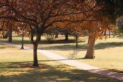 温暖的公园 免版税图库摄影