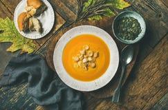 温暖的南瓜奶油色汤用油煎方型小面包片和种子在板材 免版税图库摄影