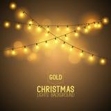 温暖的发光的圣诞灯 免版税库存照片