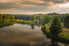 温暖的夏天晚上 河的看法有象草的海岸、树和一个密集的森林的在多云天空下 库存照片