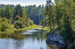 温暖的夏天河在岩石和绿色森林中间流动 免版税库存图片