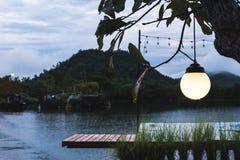 温暖的枝形吊灯轻垂悬从树 图库摄影