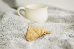 温暖的格子花呢披肩和咖啡的图片或茶在白色backg 免版税库存照片