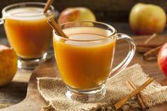 温暖的热的苹果汁 图库摄影