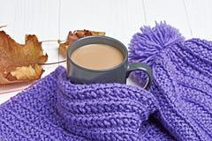 温暖的盖帽、围巾和热的饮料 库存照片