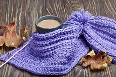 温暖的盖帽、围巾和热的饮料 免版税库存图片