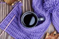 温暖的盖帽、围巾和热的饮料 免版税库存照片