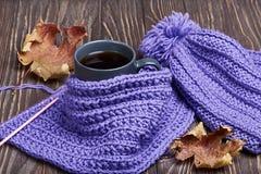 温暖的盖帽、围巾和热的饮料 库存图片