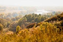温暖的秋天风景 在河的顶视图 免版税库存图片
