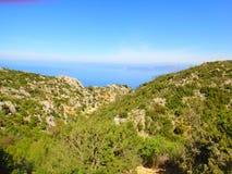 温暖的美好的山风景 在雾的山,绿色树,在石头中的夏天草 旅行在山 免版税库存照片