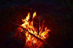 温暖的营火在晚上 库存照片