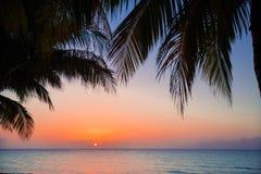 温暖的邀请的日落时间迷人的华美的美丽的景色在古巴人科科岛海岛的 库存图片