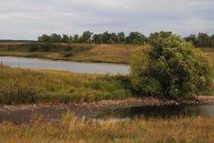 温暖的风景河岸 阳光在一多云天 偏僻的结构树 免版税库存照片