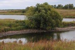 温暖的风景河岸 阳光在一多云天 偏僻的结构树 库存图片