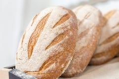 温暖的鲜美新近地被烘烤的面包大面包在面包店商店或市场上 免版税库存图片