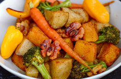 温暖的素食主义者沙拉 图库摄影