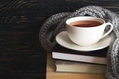 温暖被编织的格子花呢披肩、茶和书 库存照片